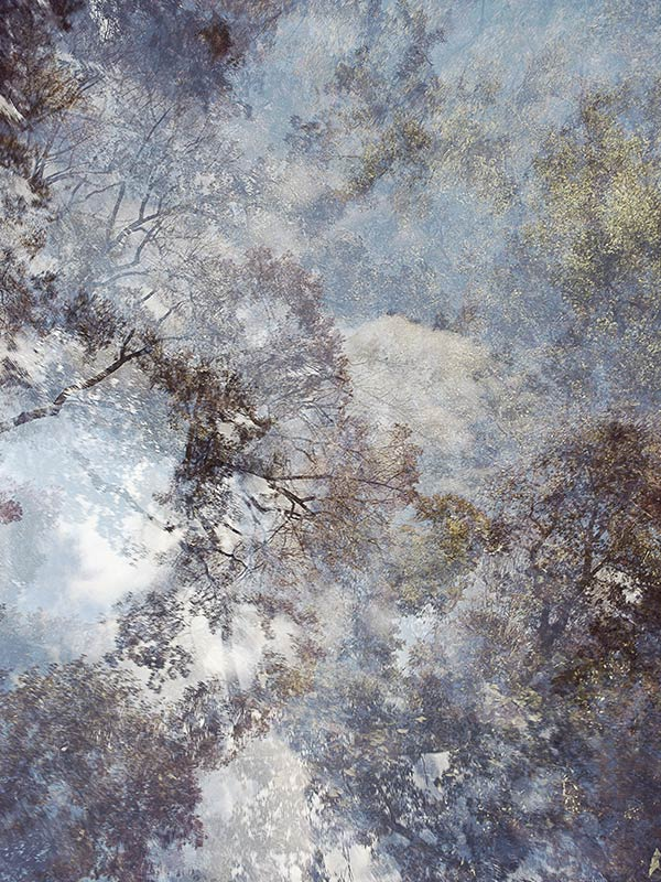 Tomoko Iki | Arte Laguna Prize