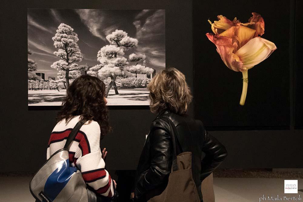 Arte Laguna Prize 18.19
