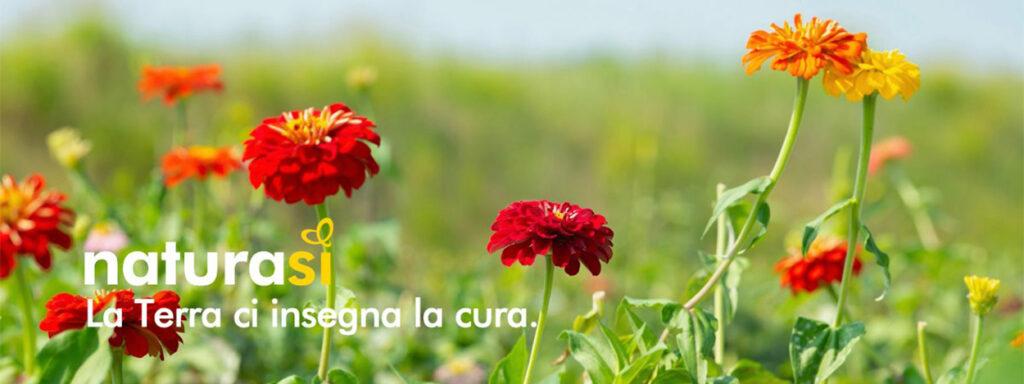 NaturaSì | Arte Laguna Prize